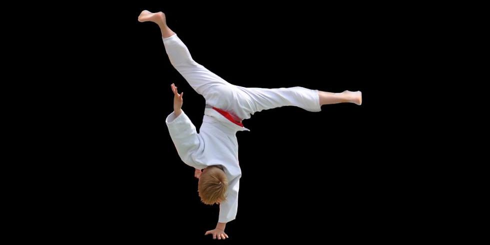 Kampfkunst-Trainingslager für Kids und Jugendliche