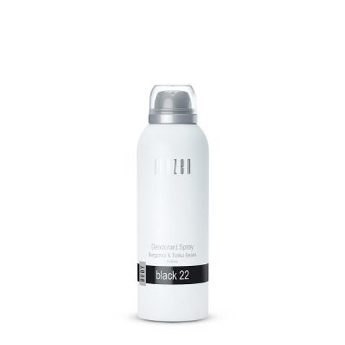 Deodorant Spray Black 22
