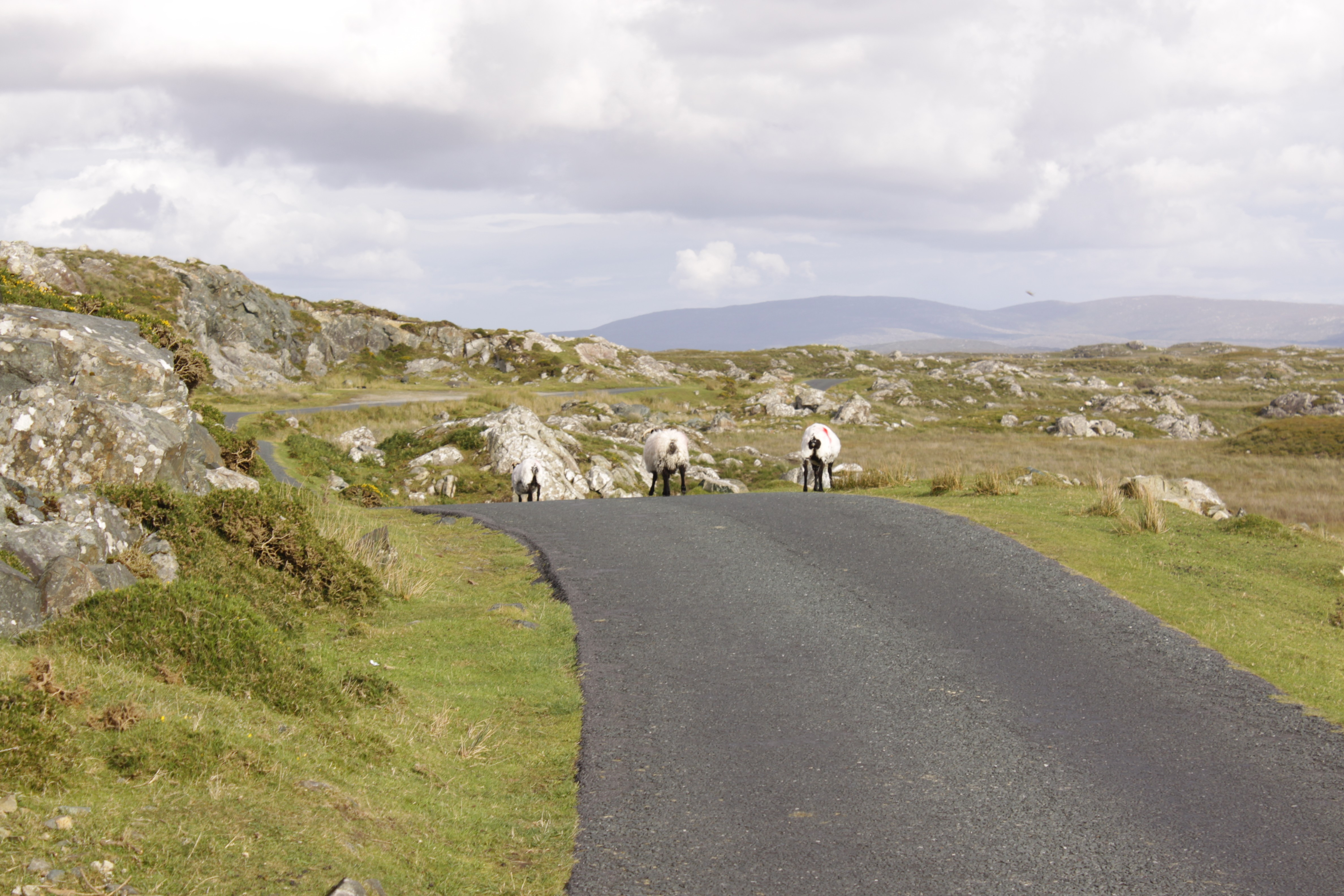 Irlande 0438