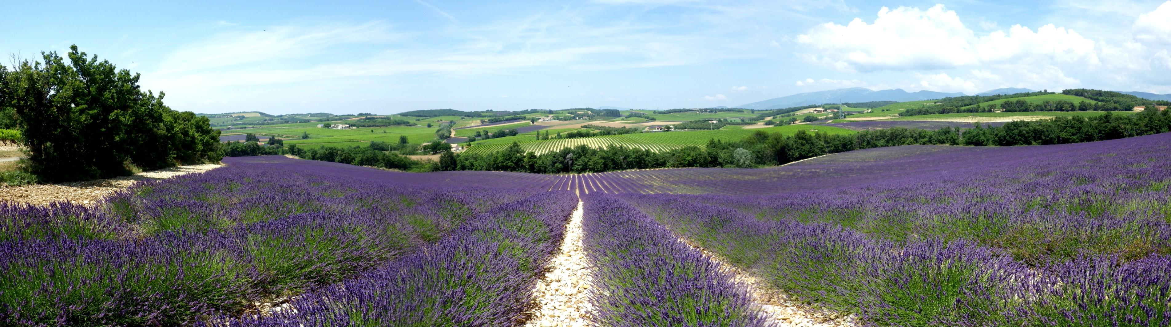 Plateau de Vinsobres