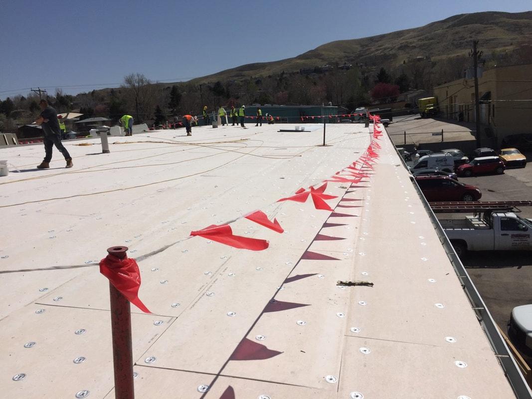 TPO re roof