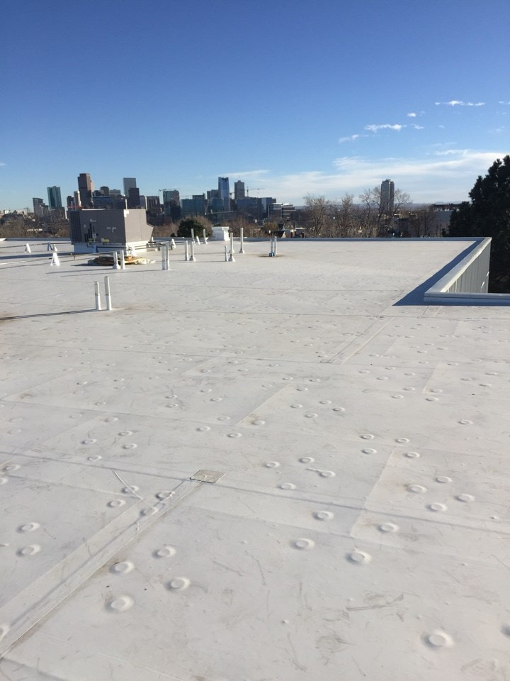 Metal Siding & Flat Roof