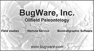 bugware.jpg