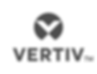 ver_logo_tm_sm_vrt_rgb_gry.png