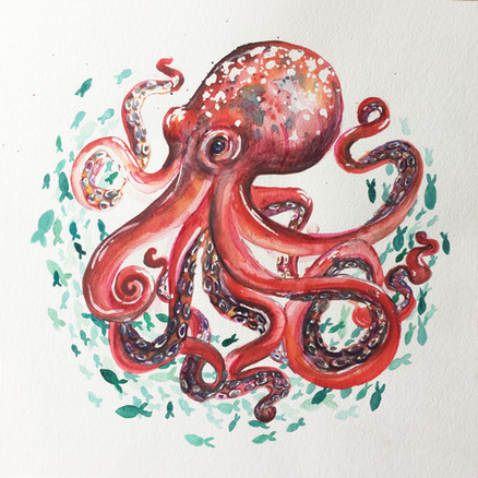 Watercolour Octopus