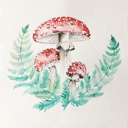 watercolour mushroom
