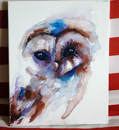 owl, watercolour
