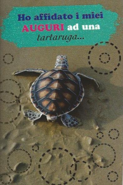 Tartaruga in spiaggia BC 90