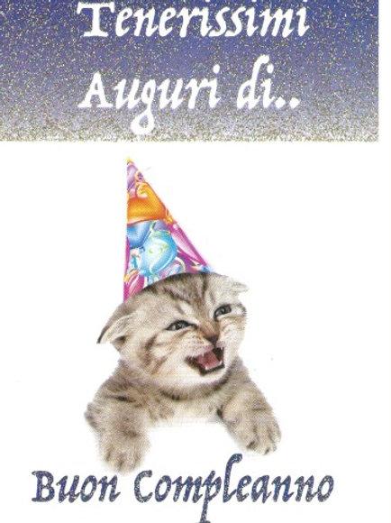 Gattino compleanno BC 102
