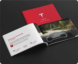 Paul Bonnell Graphics-Tesla Website Cover Image
