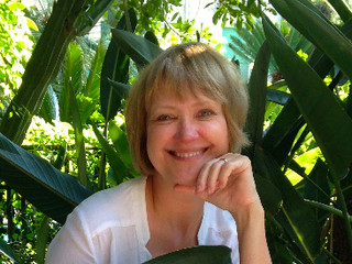 A chat with Carol Wilson