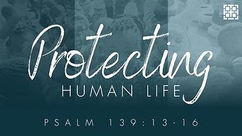 Protecting Human Life 117.jpg
