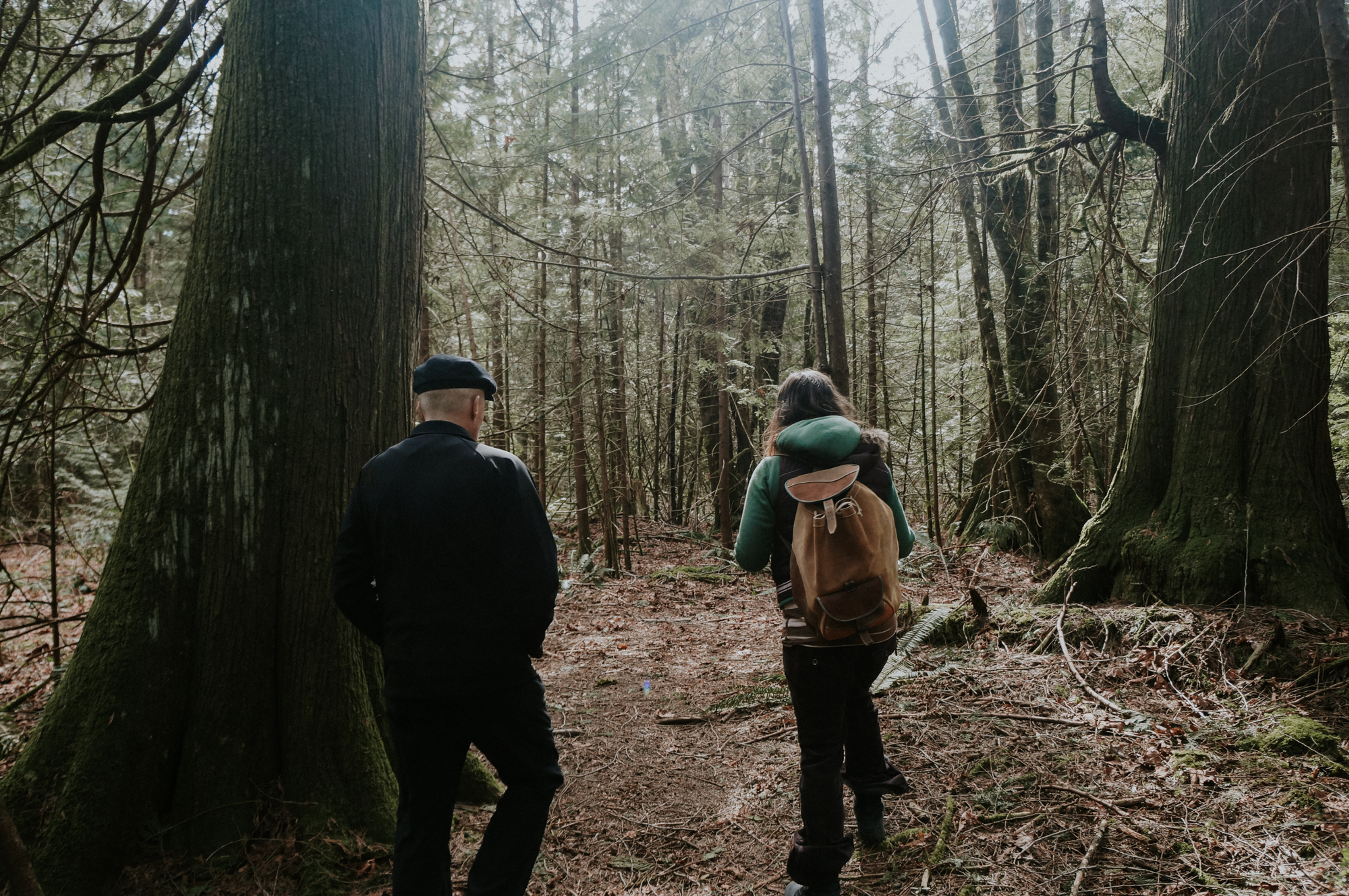 Forest Therapy Walk for Beginners