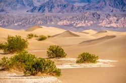 Death Valley National Park - 130 mil