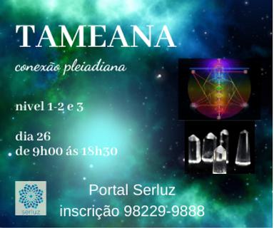 TAMEANA.png
