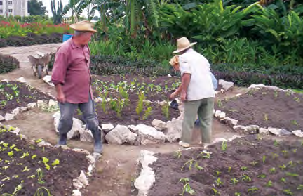 Permaculture in Ecuador