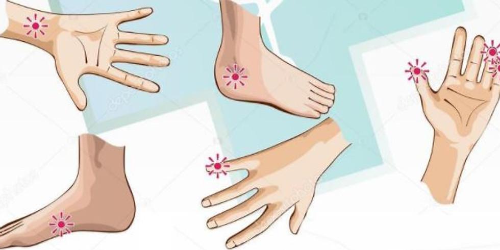Formation Acupression des oreilles, mains et pieds