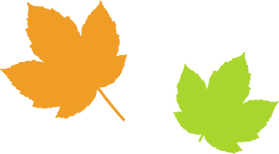 Simple Maple Leaves
