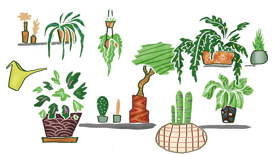 Garden_binnen.jpg