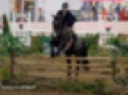 NEC Photo Jumper.jpg
