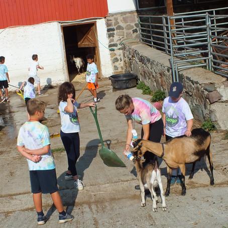 Goats N' Gardens Week 7 Day 5