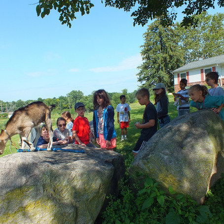 Goats n' Gardens Week 7 Day 4