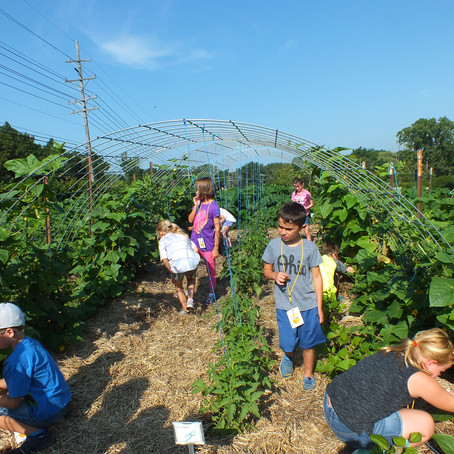 Life on the Farm Week 6 Day 1