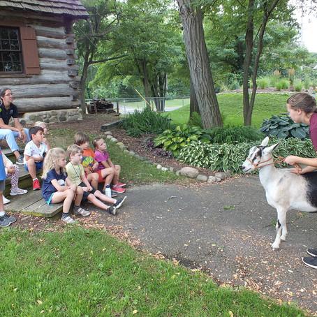 Goats n' Gardens Week 7 Day 1