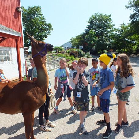 Animal Excursion Week 5 Day 4
