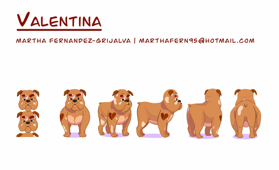 Valentina the Bulldog