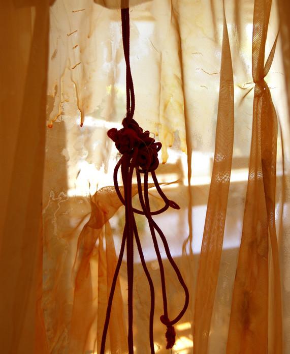 light shroud abstract.jpg