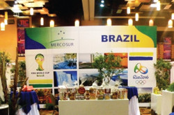 BRAZIL TIC BOOTH BACKDROP 2011
