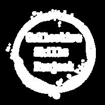 CSP - white logo PNG.png