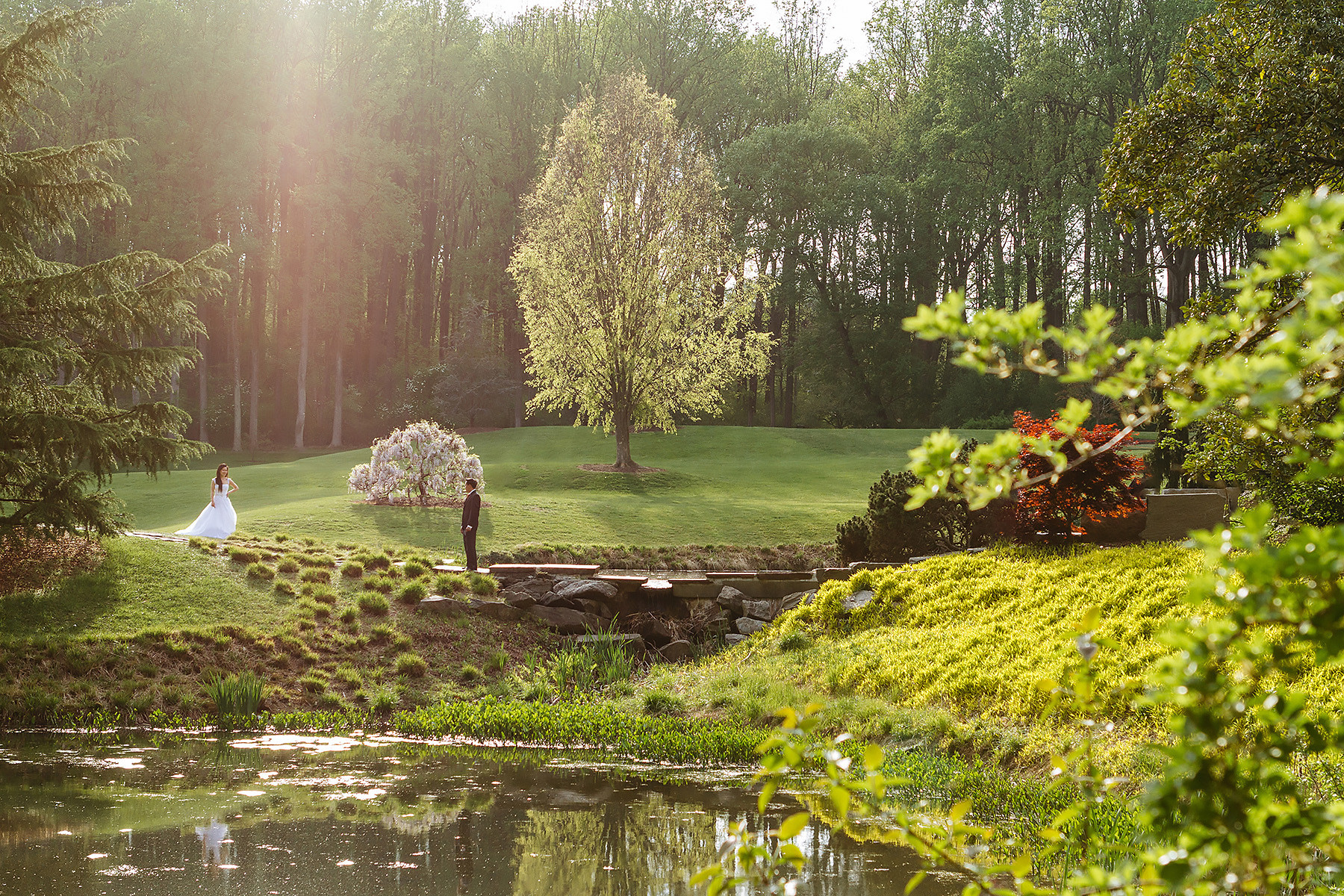 Brookside Gardens Bride & Groom Portrait