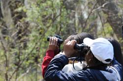 Children birdwatching