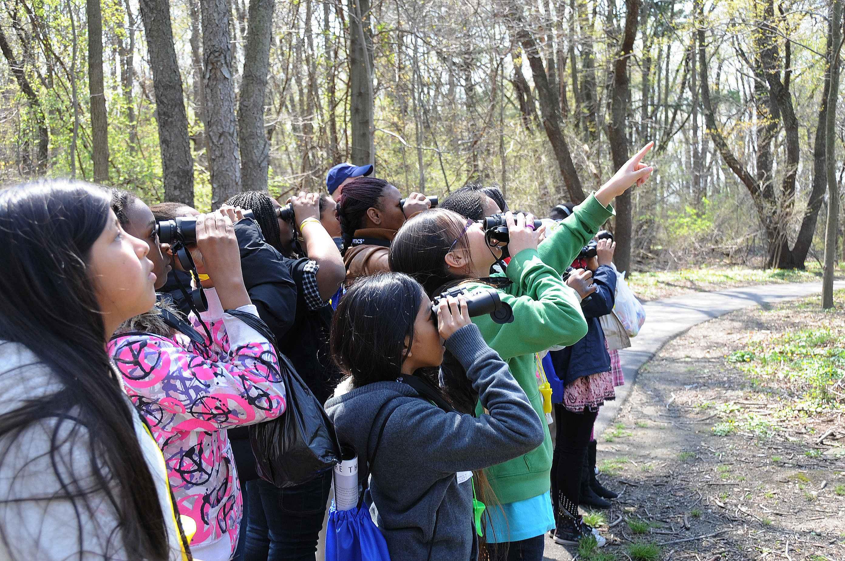 Children looking for birds