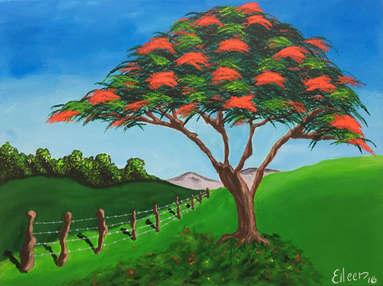 Red Tropical Tree Flamboyan.jpg