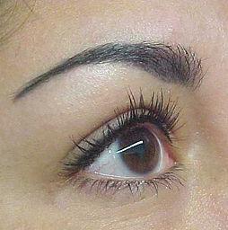 Permanent_makeup,_eyebrow_procedure.jpg