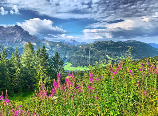 SOW in Gstaad