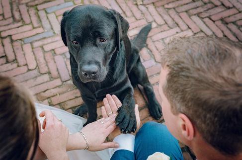 Bruidspaar krijg poot van hun hond