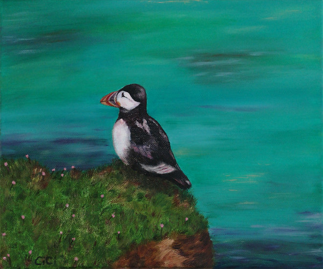 Watchful Puffin