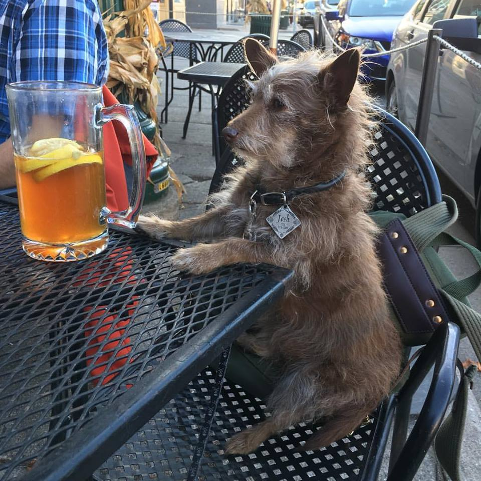 Josh enjoys happy hour on the patio.