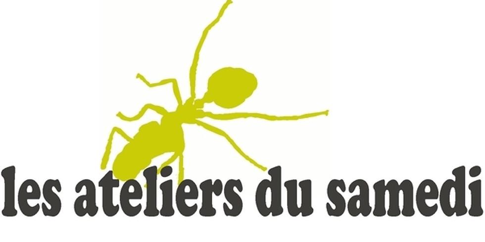 """""""Réseaux Sociaux"""" - Module complémentaire - le 19 Mai 2018 - 08h00 à 12h00"""