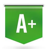 SSI - BrandYourself - Google Indice A+.J
