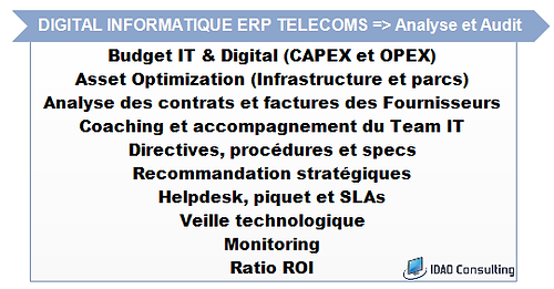 IDAO Consulting - Pascal Metrailler + Analyse Audit Capex et Opex IT