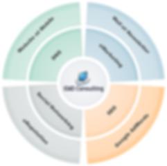 IDAO Consulting - Pascal Metrailler + Transition Numerique Social Media Marketing digital