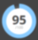 SSI - ReputationVIP - IDAO Score 95 - li