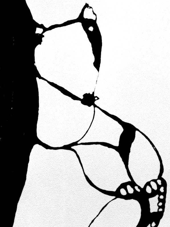 black and white bear_edited-1 sketch_edi