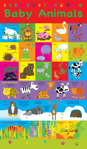 animals_poster