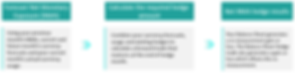 Balance Sheet Hedging Process